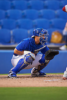 Dunedin Blue Jays catcher Mike Reeves (19) during the second game of a doubleheader against the Palm Beach Cardinals on July 31, 2015 at Florida Auto Exchange Stadium in Dunedin, Florida.  Dunedin defeated Palm Beach 4-0.  (Mike Janes/Four Seam Images)