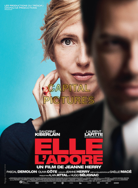 POSTER ART<br /> in Elle l'adore (2014) <br /> *Filmstill - Editorial Use Only*<br /> CAP/NFS<br /> Image supplied by Capital Pictures