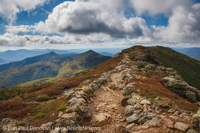 Alpine Tundra System along the Appalachian Trail (Franconia Ridge Trail), near Little Haystack Mountain, during the late summer months in the New Hampshire White Mountains. Mount Flume and Liberty are off in the distance. Scree walls line the trail edge and are used to protect the fragile environment.