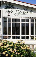 Europe/France/Aquitaine/33/Gironde/Bassin d'Arcachon/Le Cap Ferret: L'hôtel des Pins