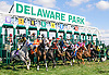Lil' Smartiepants winning at Delaware Park on 9/3/16