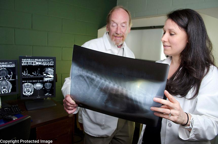Dr. Shores and Dr. Gambino examine radiographs.