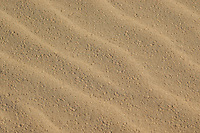Patterns in sand, Algodones Dunes, Imperial County, California
