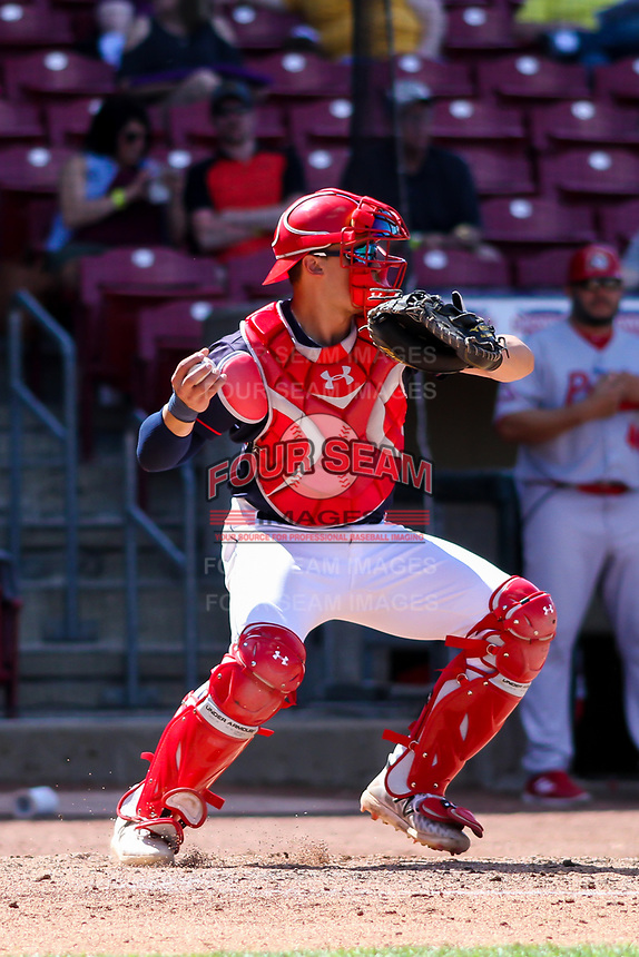 Cedar Rapids Kernels catcher Ben Rodriguez (23) throws down to third base between innings during a Midwest League game against the Peoria Chiefs on May 26, 2019 at Perfect Game Field in Cedar Rapids, Iowa. Cedar Rapids defeated Peoria 14-1. (Brad Krause/Four Seam Images)