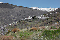 Capileira and surrounding mountains, gorge of the Poqueira river, Alpujarra, Andalucia, Southern Spain. Moorish influence is seen in the distinctive cubic architecture of the Sierra Nevada's Alpujarra region, reminiscent of Berber architecture in Morocco's Atlas Mountains. Photograph by Manuel Cohen.