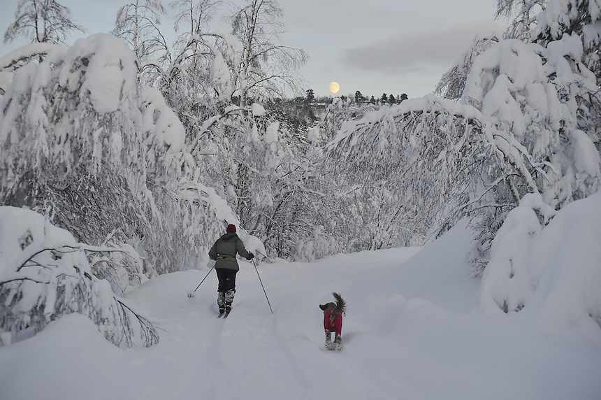Landscape,Landskap,Norway