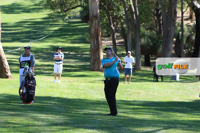 Ashley Hall (AUS) on the 1st during Round 2 of the ISPS Handa World Super 6 Perth on Friday 17th February 2017.<br /> Picture:  Thos Caffrey / Golffile<br /> <br /> All photo usage must carry mandatory copyright credit     (&copy; Golffile | Thos Caffrey)
