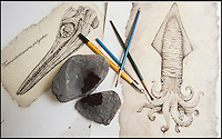 BNPS.co.uk (01202 558833)<br /> Pic: PhilYeomans/BNPS<br /> <br /> Rikey's output so far consist of a Pterodactyl skull for David Attenborough, a Pliosaur for author Tracy Chevalier and a squid which she has kept for herself.<br /> <br /> Squids in - Dorset artist can't keep up with demand - as her fossil art is done using incredibly scarce 200 million year-old fossilised ink.<br /> <br /> Rikey Austin, 49, extracts ink from a phragmoteuthid fossil, which are somewhere between a squid and a cuttlefish and lived approximately 200 million years ago. <br /> <br /> Her husband, geologist Paddy Howe, finds the fossils while walking along the Jurassic Coast in Lyme Regis, West Dorset, which is a hotbed of fossilised activity.<br /> <br /> Mrs Austin then powders the ink, adds a tiny bit of water and uses it to create captivating images of dinosaurs and other fossilised creatures. <br /> <br /> The phragmoteuthid defended itself by shooting out ink and some of the fossils still have their original pigment in an ink sack inside.<br /> <br /> However, these fossils do not preserve themselves as well as other fossils, so it is extremely rare to find one with its ink sack intact.<br /> <br /> As a result, the mother-of-three has only produced seven drawings since she first experimented with fossilised ink in 2010.
