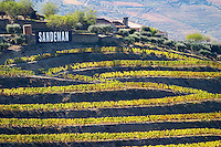 vineyards quinta do seixo sandeman douro portugal