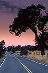 Morning light over country road near Plymouth, Shenandoah Valley, Amador County, California