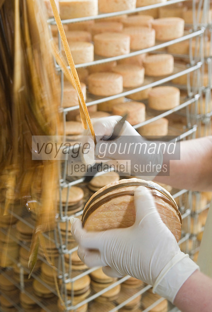 Europe/France/Normandie/Basse-Normandie/14/Calvados/Pays d'Auge/Saint-Pierre sur Dives/Boissay: Production du Livarot au lait cru à la fromagerie La Houssaye - les fromages sont entourés manuellement de bandelettes faites de brins de laiche roseau cultive