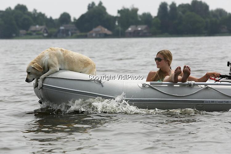 Foto: VidiPhoto<br /> <br /> BREUKELEN - De beste stuurman staat gewoon op de voorplecht van dit rubberbootje op de Loosdrechtse Plassen. Dankzij het warme weer is mens en dier op zoek naar verkoeling. En waar kun je dan beter je hond uitlaten dan op het water. Deze labrador retriever geniet donderdag in ieder geval met volle teugen.