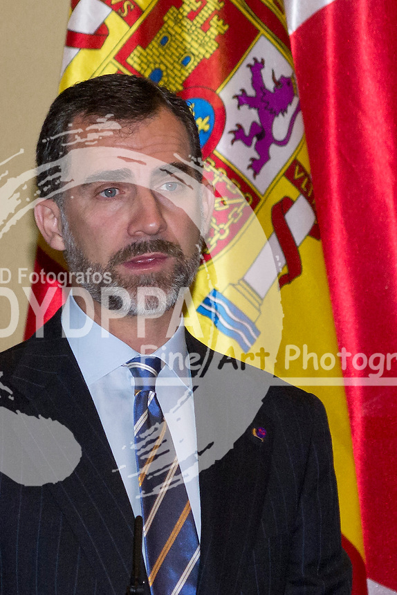 11.06.2013. Real Casa de la Moneda. Madrid. Spain.  Prince Felipe of Spain and  Imperial Highness Crown Prince Naruhito of Japan attend the Opening Ceremony Of The Meeting Of Committee Of Business Cooperation Bilateral Spanish-Japanese. In the image: Prince Felipe. (C) Ivan L. Naughty / DyD Fotografos//