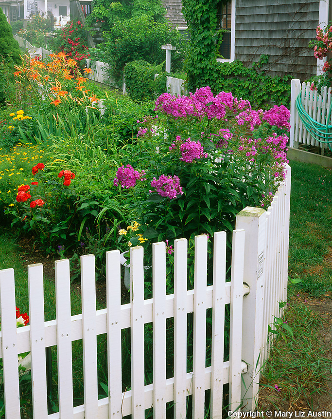 Provincetown, Cape Cod, MA <br /> A mix of summer flowers including phlox and day lilies boarder a white picket fence along a grass pathway