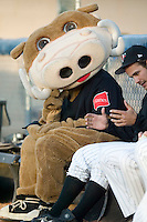 Wally the Warthog takes a breather in the bullpen at Ernie Shore Field in Winston-Salem, NC, Sunday, May 6, 2007