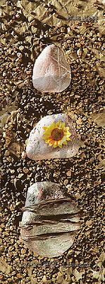 Jacek, FLOWERS, portrait, macro, photos, PLSE, PLSEbak8,#F# Blumen, flores, retrato