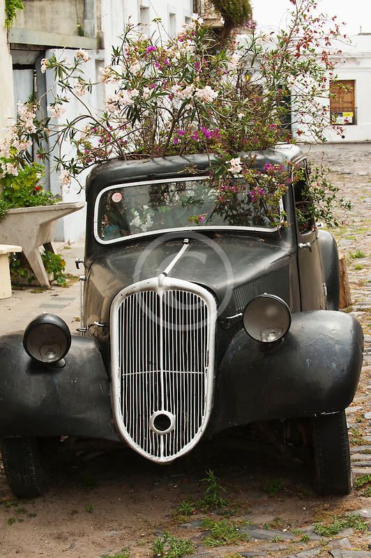 Uruguay, Colonia del Sacramento, Abandoned antique automobile on cobbled street