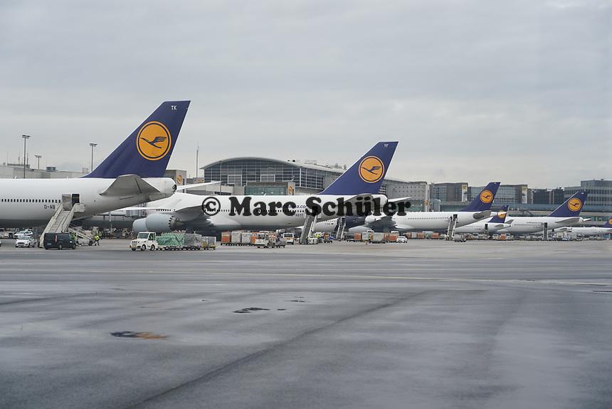 Maschinen der Lufthansa am Frankfurter Flughafen - Frankfurt 16.10.2019: Eichwaldschule Schaafheim am Frankfurter Flughafen