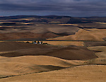 Wheat Fields Eastern Washington