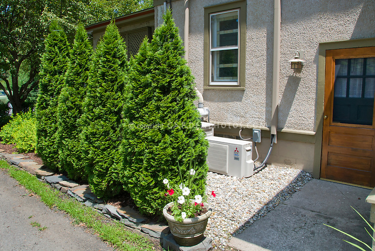 Hiding the air conditioning with privacy shrubs evergreens next to house and driveway