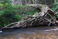 The Salmon Trout River near Marquette Michigan.