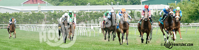 Gulf Coast Breeze winning at Delaware Park on 7/10/14