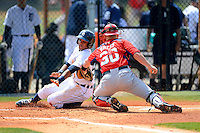 Washington Nationals catcher Kris Watts #30 tags out Dixon Machado attempting to score a run during a minor league Spring Training game against the Detroit Tigers at Tiger Town on March 22, 2013 in Lakeland, Florida.  (Mike Janes/Four Seam Images)