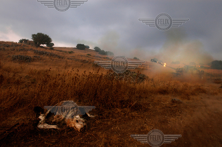 An Israeli artillery battery in the western Golan Heights fires towards Lebanon. In the foreground is the corpse of a cow. Israel launched attacks on Lebanon in retaliation for the capture of two of its soldiers by Hezbollah (Hizbollah) militants.