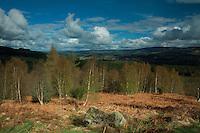 Deeside from Scolty Hill, Banchory, Aberdeenshire