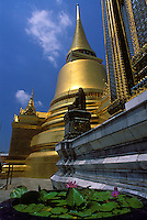 Lotus flowers and gilded stuppa, Grand Palace, Bangkok, Thailand