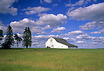 White barn in a field, Presque Isle, Maine, USA