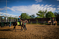 LOUISVILLE, KY - MAY 01: Mccraken schools at the starting gate in preparation for the  Kentucky Derby at Churchill Downs on May 01, 2017 in Louisville, Kentucky. (Photo by Alex Evers/Eclipse Sportswire/Getty Images)
