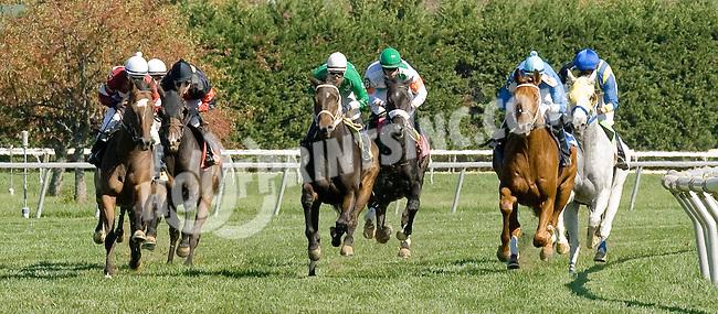 Avilord winning at Delaware Park on 10/13/12