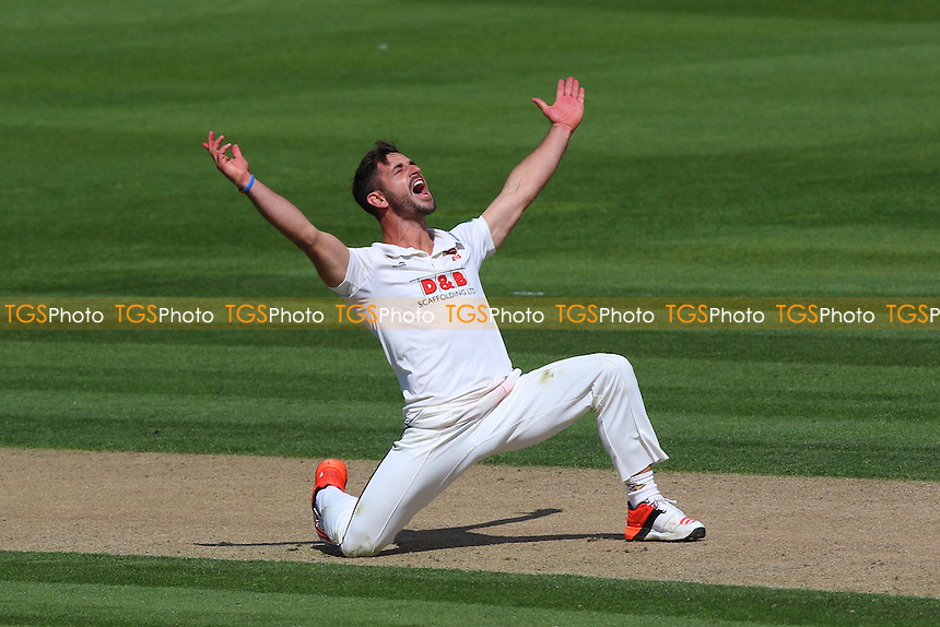 Ryan ten Doeschate of Essex successfully appeals for the wicket of Chris Nash during Sussex CCC vs Essex CCC, Specsavers County Championship Division 2 Cricket at The 1st Central County Ground on 17th April 2016