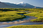 Altai Mountains, Mongolia