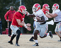 Charlotte, North Carolina - December 27, 2014: The number 13 ranked Georgia Bulldogs practice at the Charlotte Country Day School prior to their appearance in the Belk Bowl.