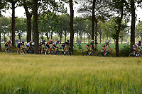 PEEST - Wielersport, Slag om Norg 02-07-2017,  het achtervolgende peloton op de Veldweg