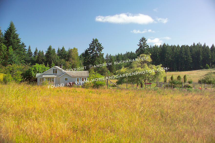 Bright summer blue sky above and billowing fields of dry meadow grass surround this organic farm on Vashon Island, just across Puget Sound from Seattle, Washington.