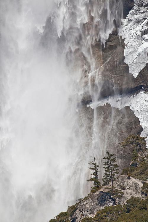 Curtains of water plummet over Upper Yosemite Falls in Yosemite NP