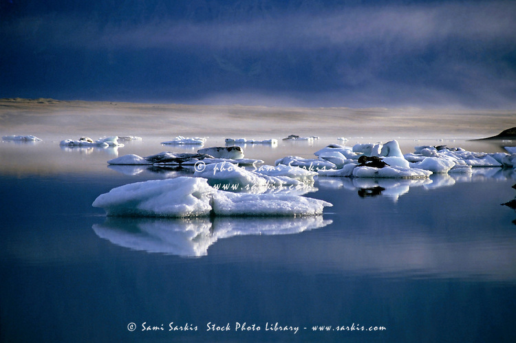 Floating icebergs reflected in the quiet waters of Jokulsarlon, the largest glacier lake in Iceland.