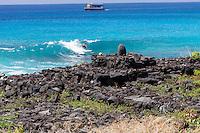 Stone shrine altar w/ surfer in the background, Kailua-Kona, Big Island, Hawaii