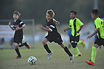Germantown Legends Black vs. CSA Tigres at Mike Rose Soccer Complex in Memphis, Tenn. on Monday, October 27, 2014. Legends Black won 7-3.