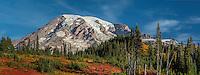 Mt. Rainier in autumn, Mt. Rainier National Park, Washington