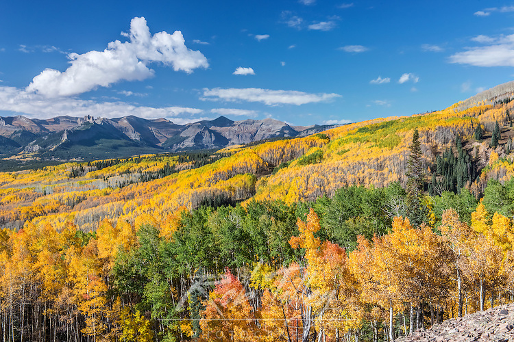 US, CO, Gunnison NF, Rocky Mountain Autumn