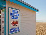 ENGLAND, Brighton, Seafood Stand