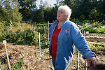 Mary-Cathern Edwards, spearheaded the project at the WSU's Master Gardeners South Kitap Garden on Wednesday Sept. 23, 2009 on Olalla, WA. The garden, which broke ground in April and planted in May produced over 2500 pounds of fresh vegetables that were donated to the SK Helpline. n addition to providing a bounty for the needy at two area food banks, the garden allowed seven Master Gardener interns to learn new techniques. Jim Bryant Photo. ©2009 All Rights Reserved.