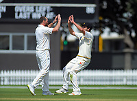 Wellington's Jamie Gibson (right) congratulates Wellington's Iain McPeake on his dismissal of Canterbury's Chad Bowe during day four of the Plunket Shield cricket match between the Wellington Firebirds and Canterbury at Basin Reserve in Wellington, New Zealand on Friday, 1 November 2019. Photo: Dave Lintott / lintottphoto.co.nz