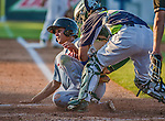 1 September 2014: Tri-City ValleyCats infielder Mott Hyde slides home but is out against the Vermont Lake Monsters at Centennial Field in Burlington, Vermont. The ValleyCats defeated the Lake Monsters 3-2 in NY Penn League action. Mandatory Credit: Ed Wolfstein Photo *** RAW Image File Available ****