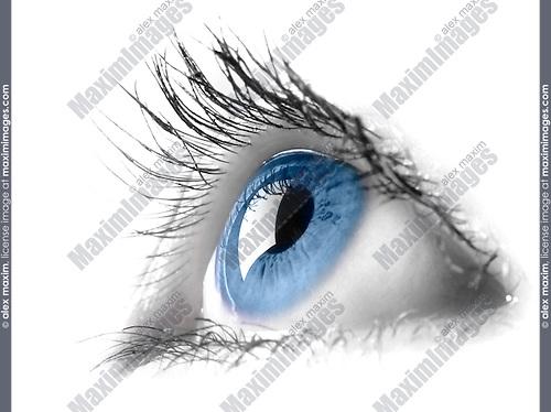 Blue female eye macro photography. Eyesight vision biometrics concept. Digitally painted and isolated on white background
