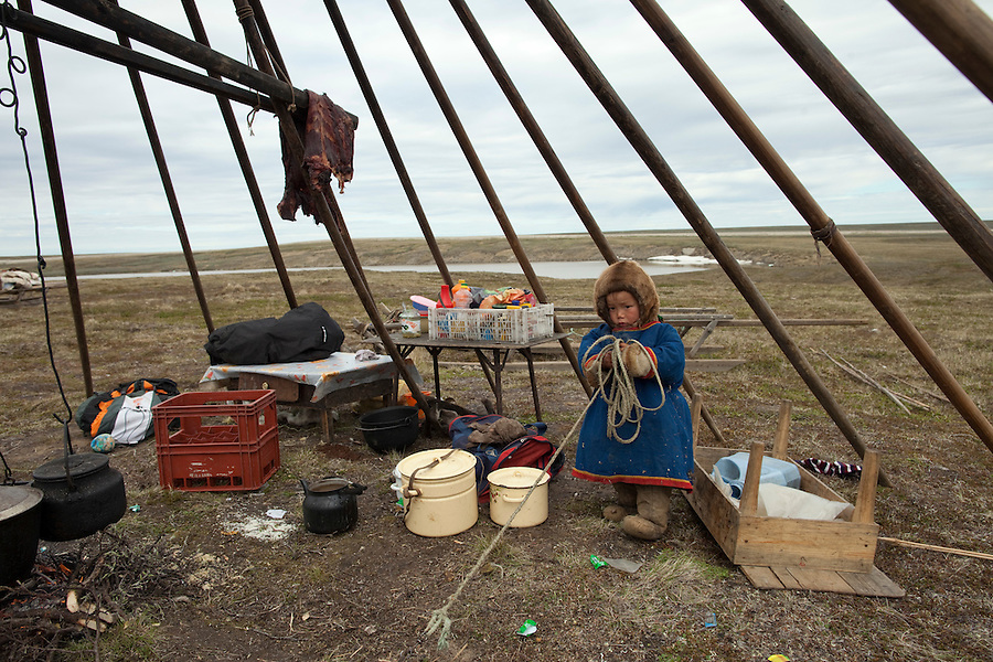 Bovanenkovo ,Yamal Peninsula, Russia, 09/07/2010..A Nenets child, one of the tribe of indigenous nomadic reindeer herders, prepares to leave their overnight camp on sledges heading north to the Russian Arctic coast.